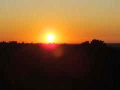 50372 Und dann wird es mal wieder (golli43) Tags: autumn sunset streets heaven herbst himmel wolken september neighbours katzen nachbarn homesweethome spaziergnge perser nahverkehr streetlive zugvgel migratorybirds krisenjahr