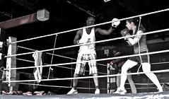 120328 Boxing-20