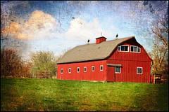 Red Barn Drama