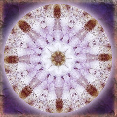 infinite peace mandala (SueO'Kieffe) Tags: digital crystal mandala meditation spiritual ascension auraliteamethyst
