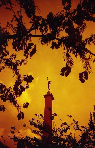 Mercurio y el árbol de Judas