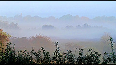 Early Morning Mist (flosspot) Tags: morning autumn mist abstract misty fog sunrise early foggy layer layers outline hazy challengefactorywinner thechallengefactory canong10 lynettecoates