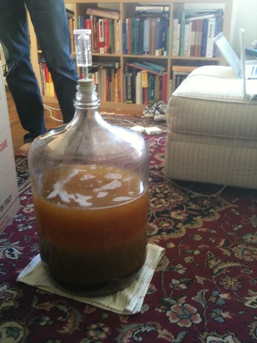 concentrated wort in carboy