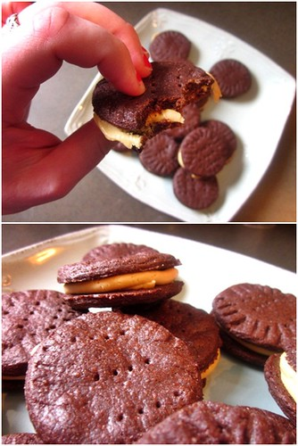 choc peanut butter cookies