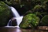 forest shower (Dennis_F) Tags: black green water zeiss forest flow woods stream long exposure wasserfall sony falls bach grün fullframe dslr schwarzwald 135mm 13518 a850 sonyalpha sonydslr vollformat gertelbach cz135 zeiss135 wasserflle dslra850 sonya850 sonyalpha850 alpha850 sony135 sonycz135