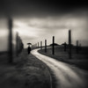 Traveler (~ superboo ~ [busy busy]) Tags: blur lensbaby standing umbrella moody cloudy path plastic poles optic byxbee