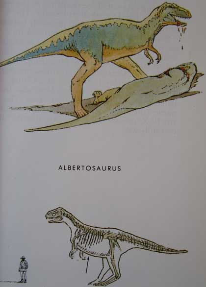 Peterson First Guides: Dinosaurs p. 37