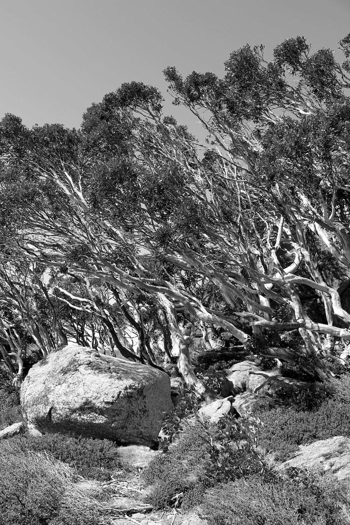 Landscape boulders nsw : Uncovered toofstups tags blackandwhite bw landscape rocks hiking