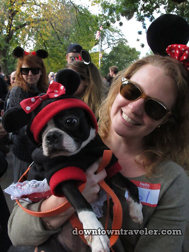 Tompkins Park Halloween Dog Parade_Boston Terrier as Mini Mouse
