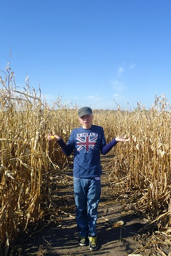 Lost in the corn maze.