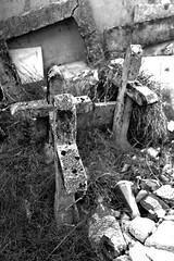 croci abbandonate2 (La.po.) Tags: erba piemonte pietra turin rami croci cimitero rovine abbandono degrado muffa canavese pertusio lauraponchia