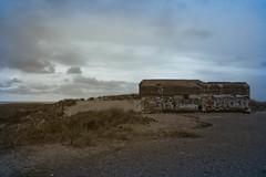 _MG_1599 (danieltreek) Tags: sun holiday holland beach nature water netherlands strand landscape see wasser sommer urlaub natur landschaft sonne nordsee niederlande northsee erholung