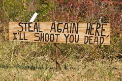Don't Steal From This Guy! (Angela M. Miller (on a long, long break)) Tags: funny sony humor hillbilly slt badgrammar homemadesign sonyalpha sonya33 sonyslt