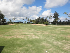 Turtle Bay Colf Course 129