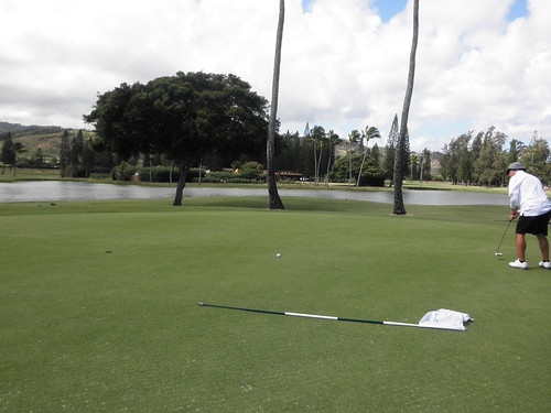 Turtle Bay Colf Course 140