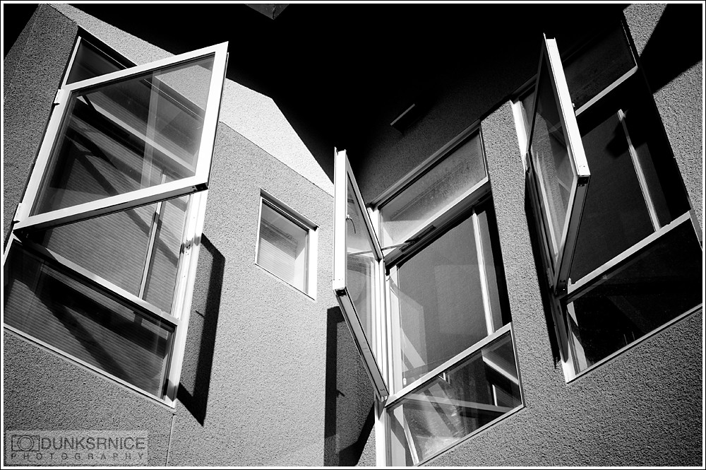 Windows B&W.
