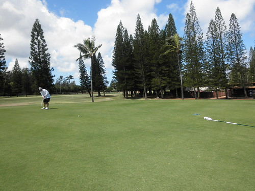 Turtle Bay Colf Course 169