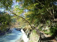 御岳山20111029-015