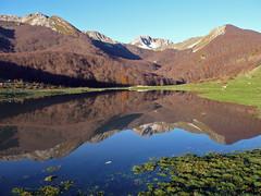 vedi flickr (www.flickr.com): Antonio Palermi