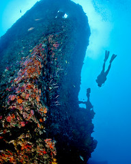 Wreck Diving Florids Keys 2011 (daverice) Tags: water coral canon underwater scuba diving wreck ikelite 5dm2