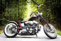 Harley Custom Bobber (KimFearheiley) Tags: harleydavidson bobber harleydavidsonmotorcycle harleydavidsoncustommotorcycle buildingaharleydavidson