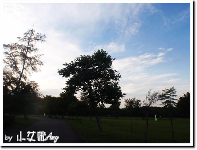 台東森林公園琵琶湖P7242398