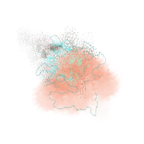 test_brush_web
