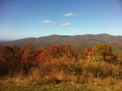 Cohutta Mountain