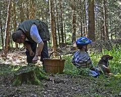 mushrooming (t.horak) Tags: wood dog forest basket helmet mushrooming