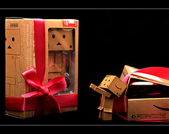 Welcome to Danbo <3 (ll.dyala.ll) Tags: camera canon 50mm 500d danbo dyala blinkagain