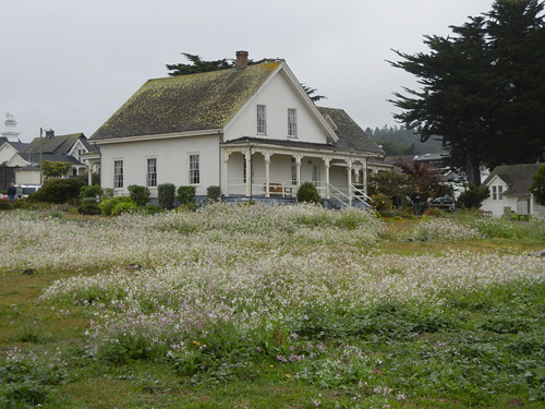 Mendocino, California _ 7657
