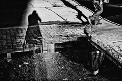 the street photographer (stephane (montreal)) Tags: street light shadow urban white selfportrait black reflection wet water photography noir montreal et blanc stephane urbaine paquet 2011