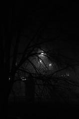 Foggy (King Haan) Tags: city bw white mist black holland netherlands fog night pentax nacht nederland kr groningen zwart wit stad zw oosterhamrikkade justpentax pentaxart onlypentax mygearandme kapteinbrug