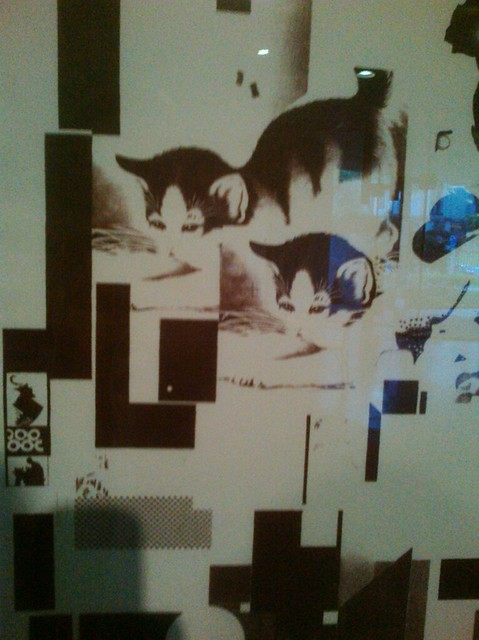 Schwitters LOL Cats (Illegal Picture Taken In-gallery)