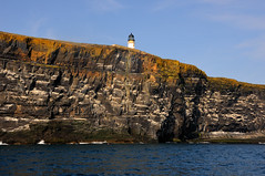 Copinsay Lighthouse from the sea, Orkney (iancowe) Tags: cliff lighthouse island scotland orkney scottish cliffs stevenson clifftop rspb northernlighthouseboard nlb deerness copinsay lighthousetrek wbnawgbsct