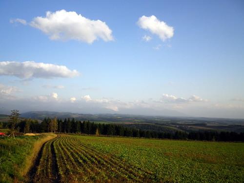 雲の峰~就実の丘