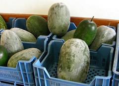 Hele wintermeloen