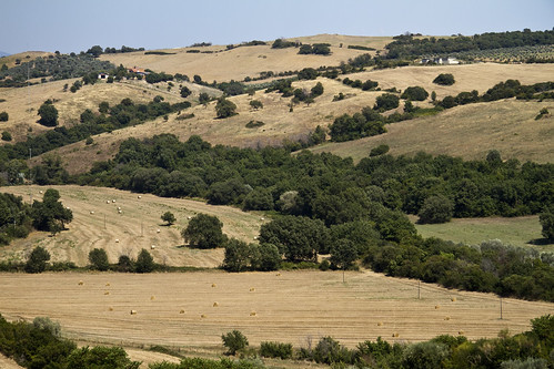 Magliano in Toscana (GR), Countyside View