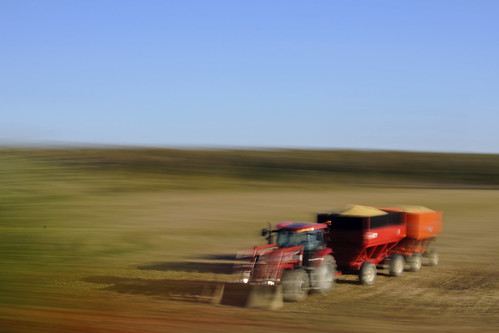 Tractor and trailers, rural Quebec, October 2011