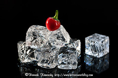 Fire and Ice (Bitter-Sweet-) Tags: red hot ice water pepper fire melting icecubes isolated onblack