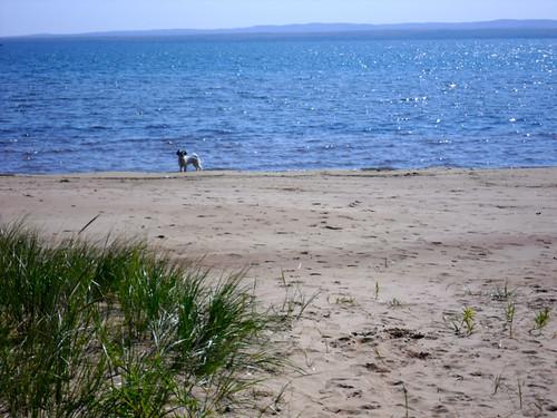 Jacobsville Beach
