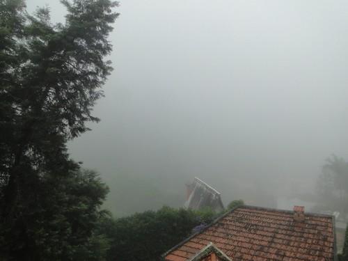 Dia de neblina