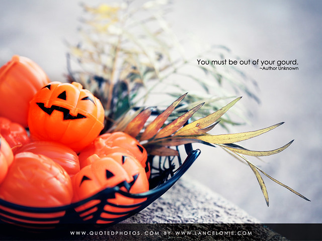In A Pumpkin Mood by lancelonie, on Flickr