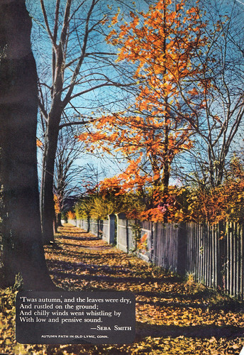 Autumn (Coronet Nov  1946)