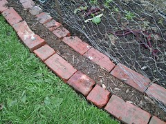 Double Brick edges