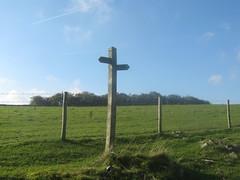Paths, Bole Hill near Sheldon, Derbyshire (eamoncurry123) Tags: public sign post derbyshire hill signpost footpath sheldon publicfootpath bolehill bole