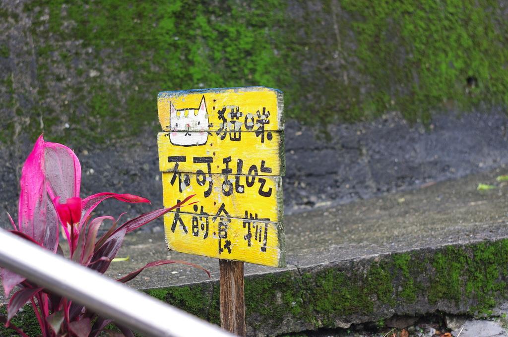 猴硐火車站半日遊~嘩~都是喵啦 ~~~!!好可愛!讚!