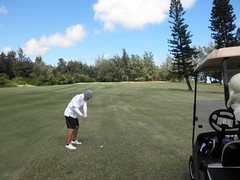 Turtle Bay Colf Course 185