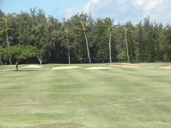 Turtle Bay Colf Course 173