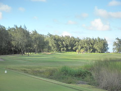 Turtle Bay Colf Course 352